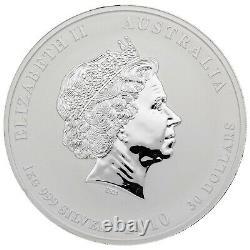 2010 1 KILO Silver KG Lunar Year of TIGER Perth Mint Australia Round Capsule