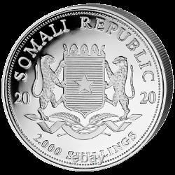 Somalia 2.000 SH. 2020 Elefant African Wildlife 1 Kilo Silber ST