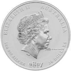 1 KG Kilo 2011 Année Lunaire Du Lapin Pièce D'argent