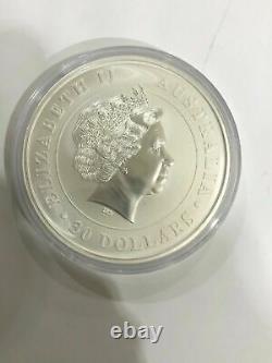 2013 Australie 1 Kilo Argent Koala Coin (bu) Enfermé Dans Une Capsule Protectrice