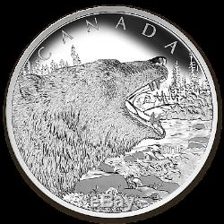 2016 Canada 1/2 Kilo En Argent Épreuve Numismatique $ 125 Roaring Grizzly Bear Sku # 97275