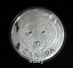 2016 Canada Aux Yeux De L'ours Esprit 250 $ Kilo Pièce En Argent Fin