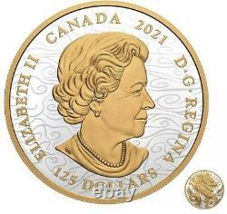 Dragon Triomphant 1/2 Kilo 0,5 Kilogramme Argent 2021 Canada Mintage 888 En Stock